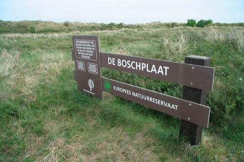 boschplaat_01