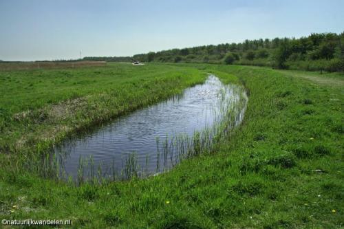 lauwersmeer_01