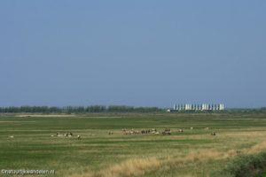 Ballastplaat Lauwersmeer