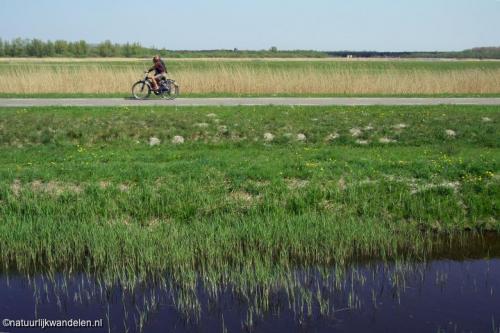 lauwersmeer_02